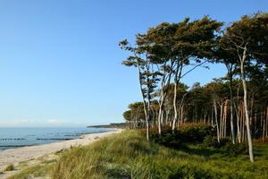 Der Ostseestrand der Halbinsel