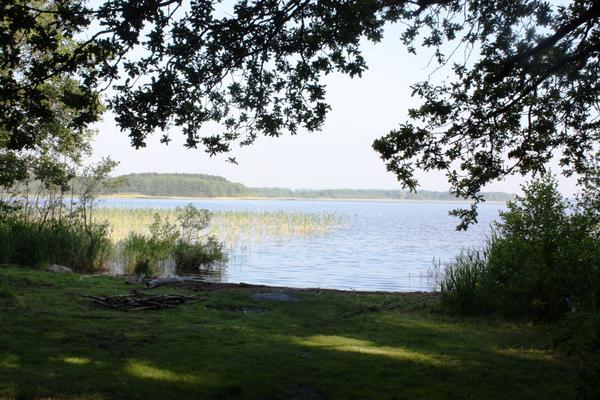 Naturschutzgebiet Borgwallsee